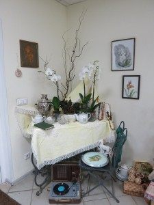 Орхидеи Ботанический сад 2