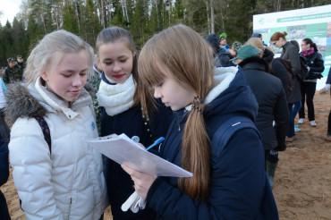 12 мая в Тверской области высадили более 750 тыс. молодых деревьев