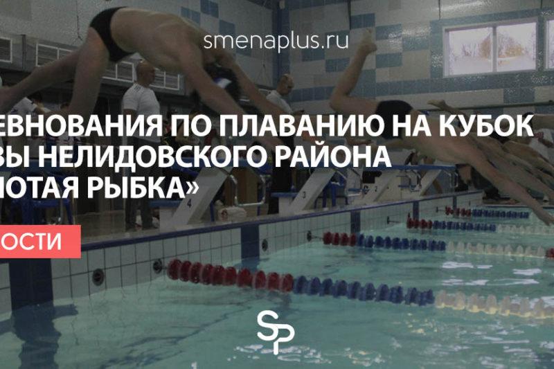 Соревнования по плаванию на Кубок Главы Нелидовского района «Золотая рыбка»