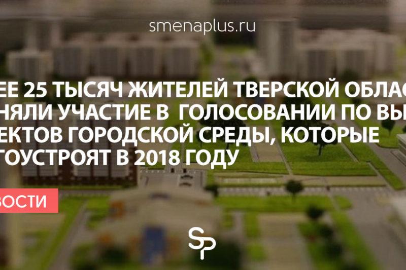 Более 25 тысяч жителей Тверской области приняли участие в  голосовании по выбору объектов городской среды, которые благоустроят в 2018 году