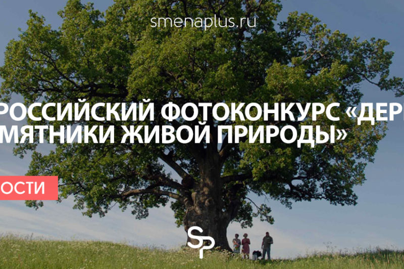 Всероссийский фотоконкурс  «Деревья — памятники живой природы»