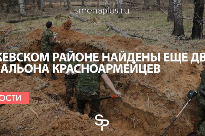 В Ржевском районе найдены еще два медальона красноармейцев