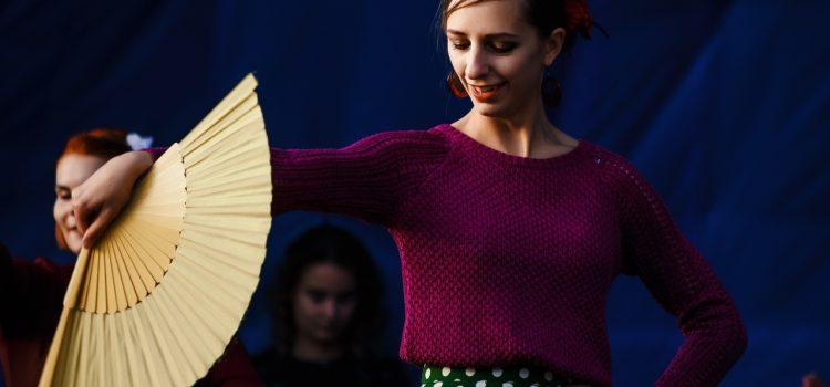 фламенко (2)